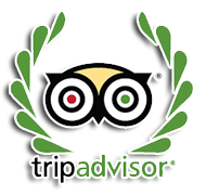 Casa Luna Hotel - Trip Advisor